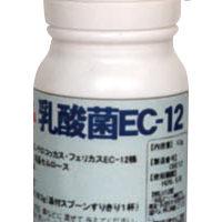 乳酸菌EC-12